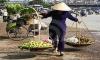 Streets alive in Vietnam